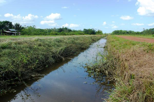 canal Saut Bief