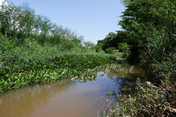 Vue du canal en fin de saison des pluies